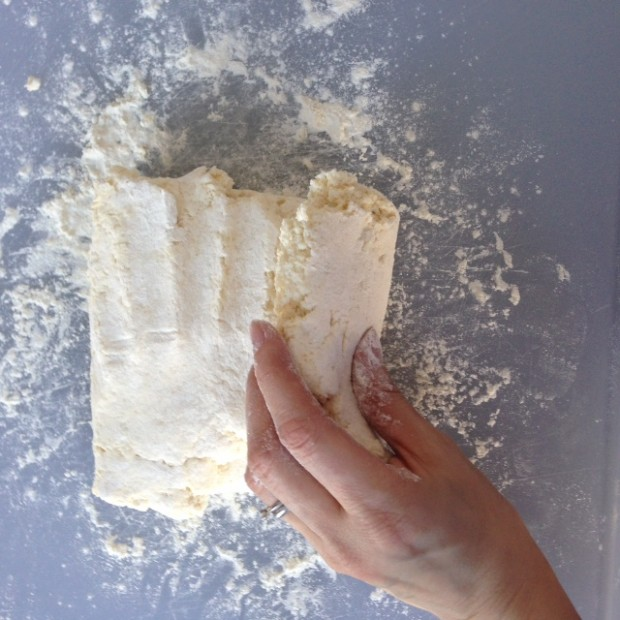 Two Ingredient Biscuits 07