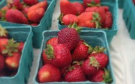 strawberries, finally!