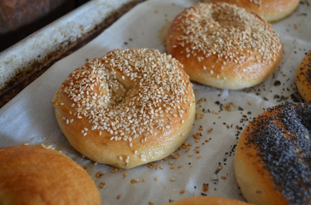 Homemade Bagels | In Jennie's Kitchen