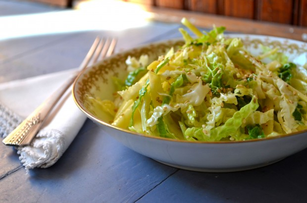 Cabbage Salad 06_01