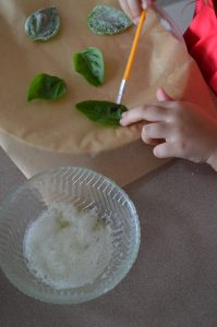 How to Make Candied Basil | Recipe at In Jennie's Kitchen
