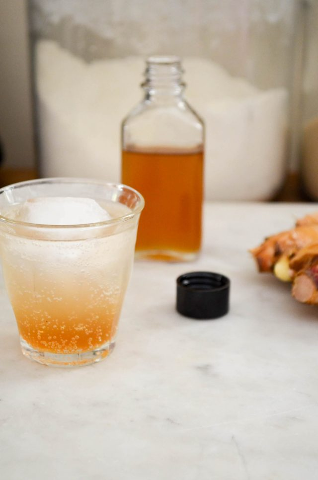 Homemade Ginger Ale   Recipe at In Jennie's Kitchen