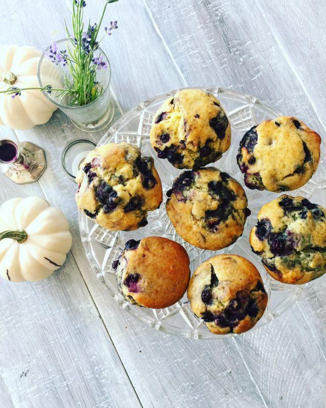 Honey Blueberry Muffins | In Jennie's Kitchen