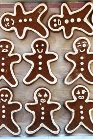 Here comes...gingerbread & royal icing