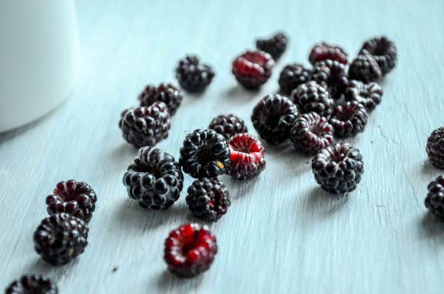 Black Raspberry Sorbet | In Jennie's Kitchen