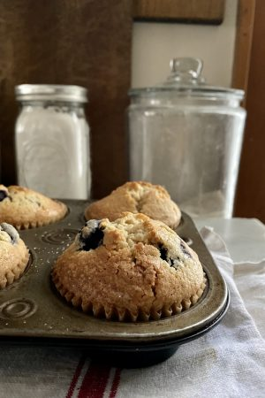 Passover Blueberry Muffin Recipe